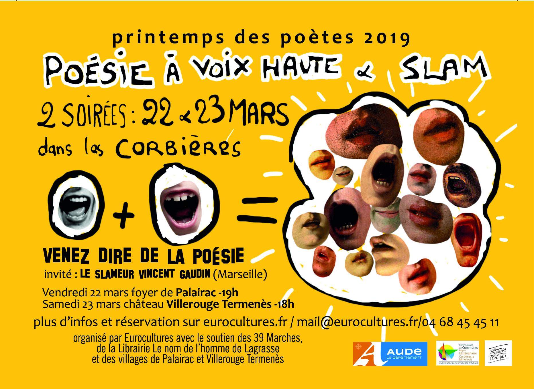 2019 - Vincent Gaudin, poésie à haute voix et slam